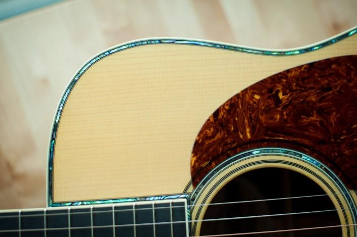 Preston Thompson Acoustic deluxe brazilian rosewood dreadnought Guitar 6