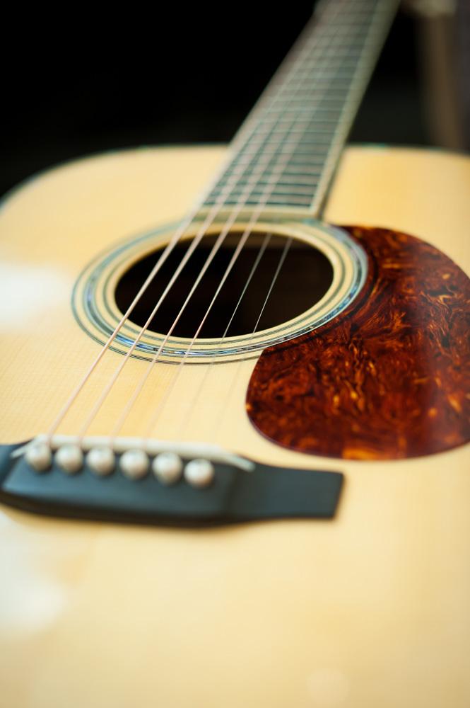 Preston Thompson Acoustic deluxe brazilian rosewood dreadnought Guitar 8